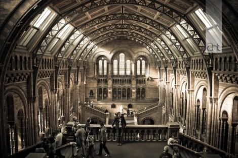 Natural History Museum. Fernando Zaiter